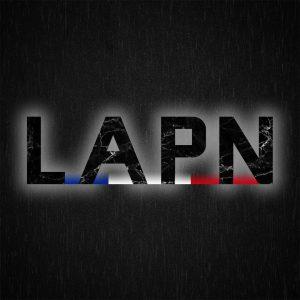 logo discord LAPN